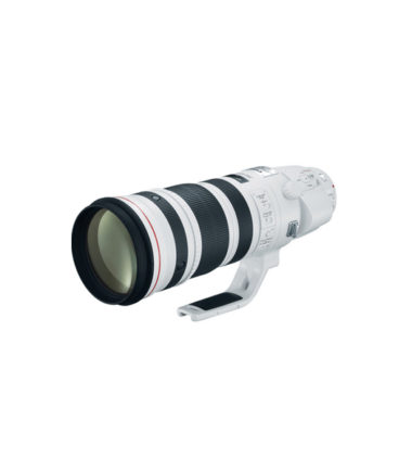 Canon EF 200-400mm f4L IS USM Extender 1