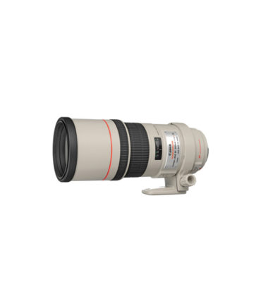 Canon EF 300mm f4L IS USM Lens