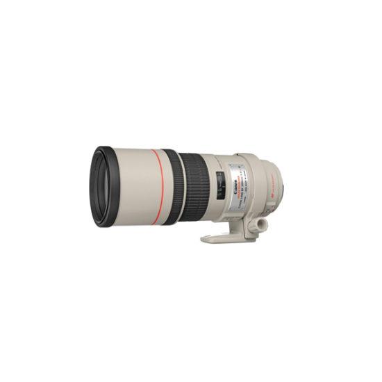 Canon EF 300mm f4L IS USM Lens