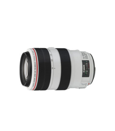 Canon EF 70-300mm f4-5.6L IS USM Lens (White)