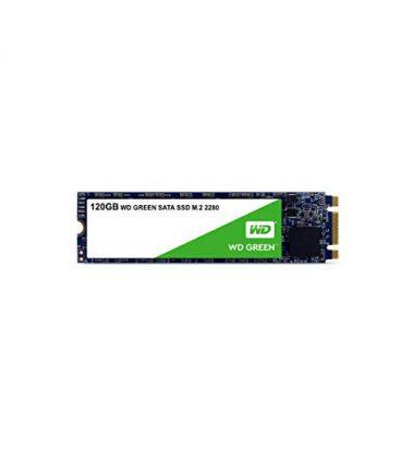 Western Digital WD WDS120G2G0B 120G Green M