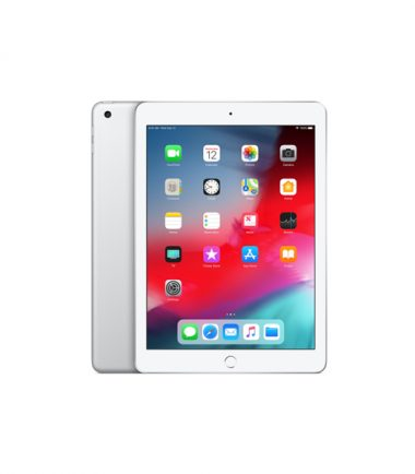 Apple iPad Mini 5 (WiFi Version, 256GB, Silver)