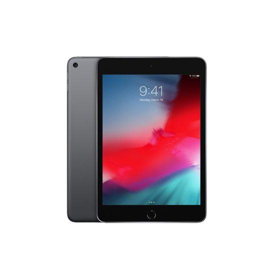 Apple iPad Mini 5 (WiFi Version, 64GB, Grey)